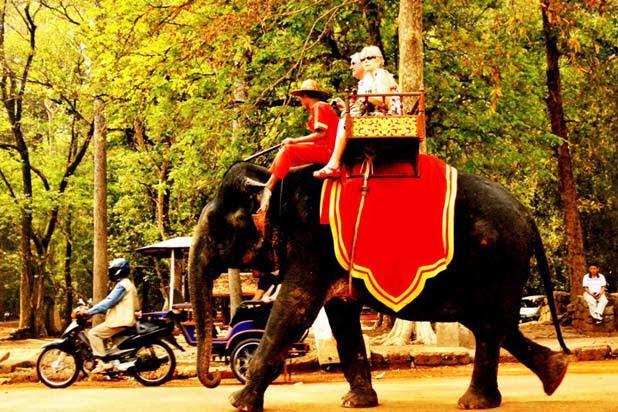 Balade à dos d'éléphant à Siem Reap
