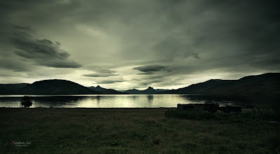 Photo: Into the night