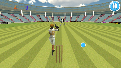 Cricket Bat Ball Hit 3D