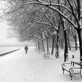by Emil Chuchkov - Landscapes Weather ( cuckove kodak )