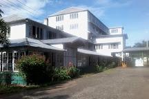Kurugama Tea Factory, Kandy, Sri Lanka