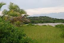 Savane Des Petrifications, Sainte-Anne, Martinique