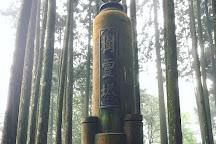 Alishan Giant Trees Park Trail, Alishan, Taiwan