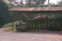 Damnoen Saduak Elephant Village, Damnoen Saduak, Thailand