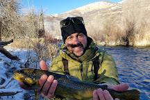 Utah Pro Fly Fishing, Park City, United States