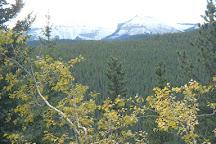 Prairie Mountain Hike, Bragg Creek, Canada