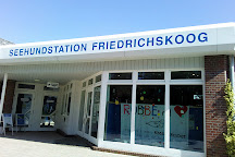Seehundstation Friedrichskoog, Friedrichskoog, Germany