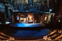 Steppenwolf Theatre Company, Chicago, United States