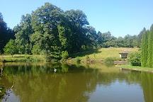 Arboretum du chateau de Neuvic d'Ussel, Neuvic, France