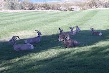 Hemenway Park, Boulder City, United States