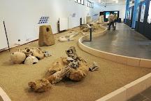 Museo e Parco Archeologico Nazionale di Capo Colonna, Crotone, Italy
