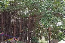 Hong Mun Mang or Khon Kaen City Museum, Khon Kaen, Thailand