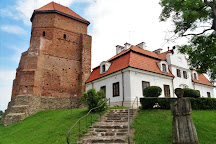 Castle in Liw, Liw, Poland