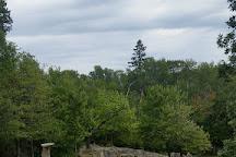 Ellsworth Rock Gardens, Voyageurs National Park, United States