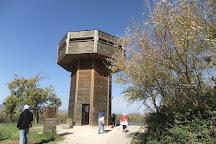 Hula Nature Reserve, Galilee Region, Israel