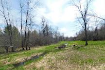 Otter Creek Preserve, Alexandria Bay, United States