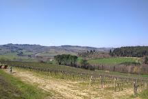 Tuscany Bike Tours, Florence, Italy