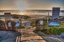 Surf Beach, Lompoc, United States