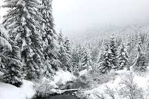 Gold Creek Pond Trail, Snoqualmie, United States