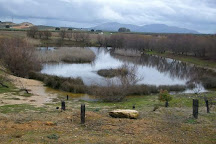 Fuente de Piedra, Antequera, Spain
