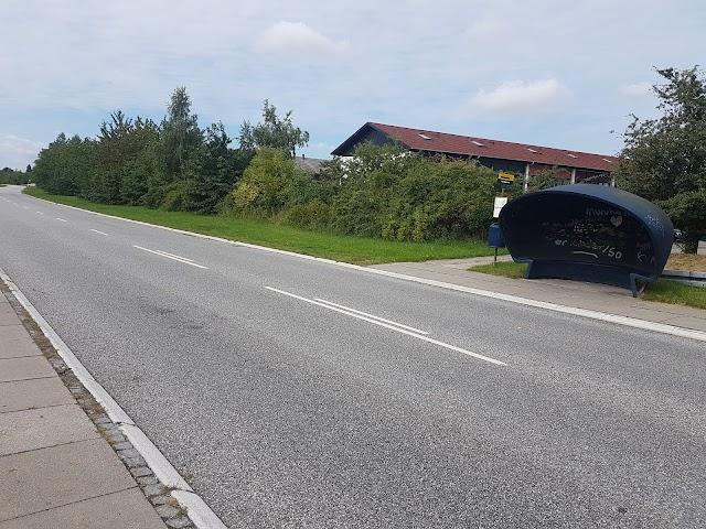Hundigevej (Lillevangsvej)