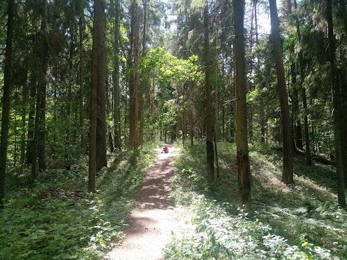 Šavaša trail