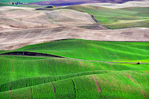 Steptoe Butte State Park, Colfax, United States