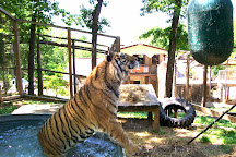 Crown Ridge Tiger Sanctuary, Sainte Genevieve, United States