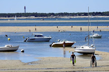 Bassin d'Arcachon, Arcachon, France