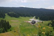 Igman, Sarajevo, Bosnia and Herzegovina