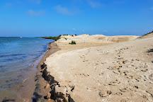 Padre Island National Seashore, Corpus Christi, United States
