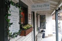 The Artsy Olive, Gatlinburg, United States