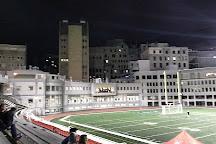 Percival Molson Memorial Stadium, Montreal, Canada