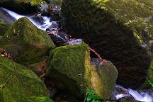 San Luis Waterfall, Perez Zeledon, Costa Rica