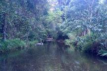 D'Aguilar National Park, Brisbane, Australia