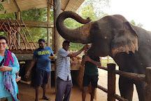 Tony Sri Lanka Tours, Ahungalla, Sri Lanka