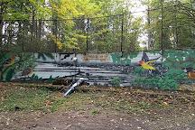 Sehome Hill Arboretum, Bellingham, United States
