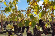 Rowlee Wines, Nashdale, Australia