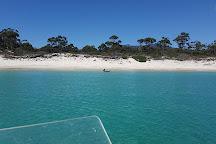 Maria Island National Park, Tasmania, Australia