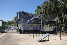 Trampoline Club
