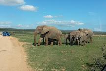 Africa Explore Safaris, Cape Town, South Africa