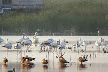 Pariej Lake, Pariyej, India