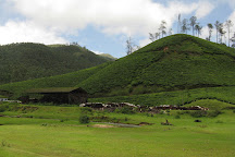 Chinnar Wildlife Sanctuary, Munnar, India