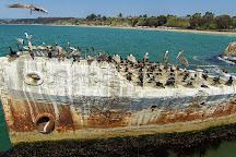 S.S. Palo Alto Concrete Ship, Aptos, United States