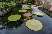 The Secret Garden Utama, Petaling Jaya, Malaysia