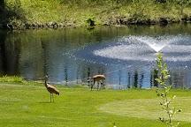 Stony Creek Metropark, Shelby Township, United States
