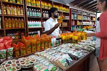 The Island Spice Grove, Mawanella, Sri Lanka