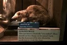 Grant Museum of Zoology, London, United Kingdom