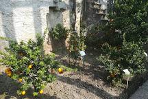 La Limonaia del Castel, Limone sul Garda, Italy