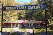 Tuckaleechee Caverns, Townsend, United States